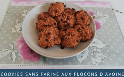 Cookies sans farine aux flocons d'avoine