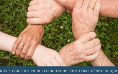 Nos 3 conseils pour reconstruire son arbre généalogique